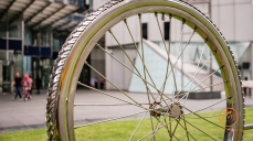 Somehow I just love this bicycle wheel.